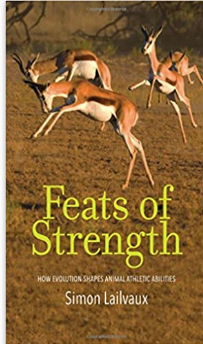 feats of strength book .png