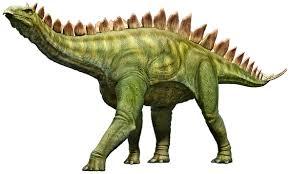 Image result for free stegosaurus photos